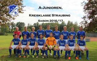 mannschaft-a-junioren-2016-17-kopie